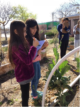Wild Friends students taking notes by a garden